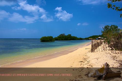 Récifs coraliens, terres rouges et kangourous : envolez-vous pour l'Australie