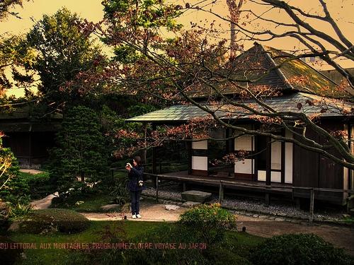 Du littoral aux volcans, votre itinéraire à la carte au Japon