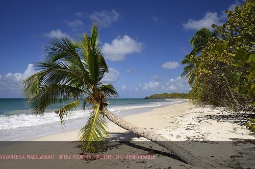 Séjour à Madagascar : préférez un tourisme responsable